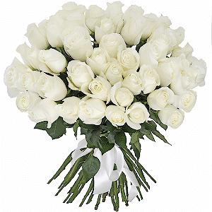 Букет из 51 белой розы Эквадор