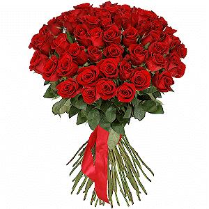 Букет из 51 красная роза Эквадор