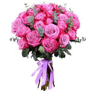 Букет из 25 фиолетовых эквадорских роз