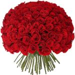 Букет 101 красная роза эквадор