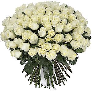 Букет из 101 белой эквадорской розы