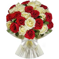 Букет из 25 красных и белых эквадорских роз