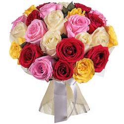 Букет из 25 разноцветных эквадорских роз