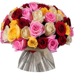 Букет микс из 51 разноцветных Эквадорских роз