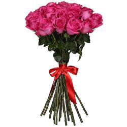 Букет из 25 розовых роз Эквадор премиум