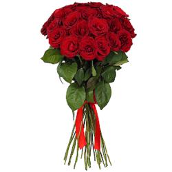 Букет из 25 красных роз Эквадор премиум